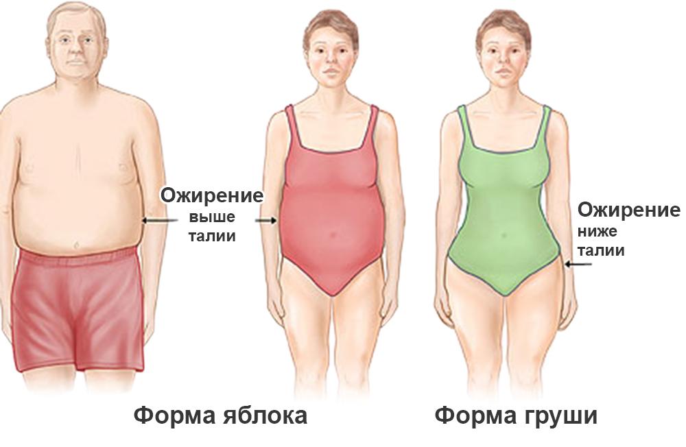 как похудеть на 5 кг упражнения