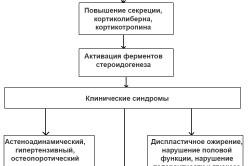 Патогенез болезни Иценко-Кушинга